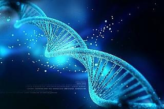 חזית המדע והעשרה