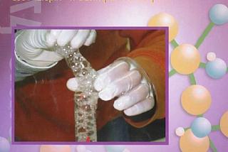 גיליון 6, 2004