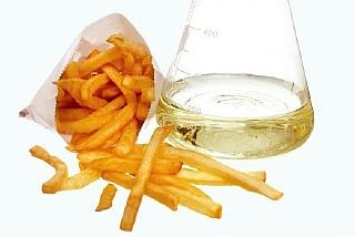 כימיה של מזון - שומנים